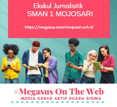 Megasus On The Web