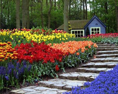 keindahan taman ketenangan minda