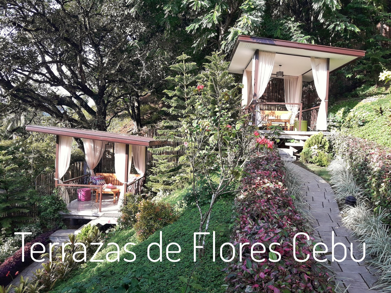 Terrazas De Flores Cebu Is A Floral Haven