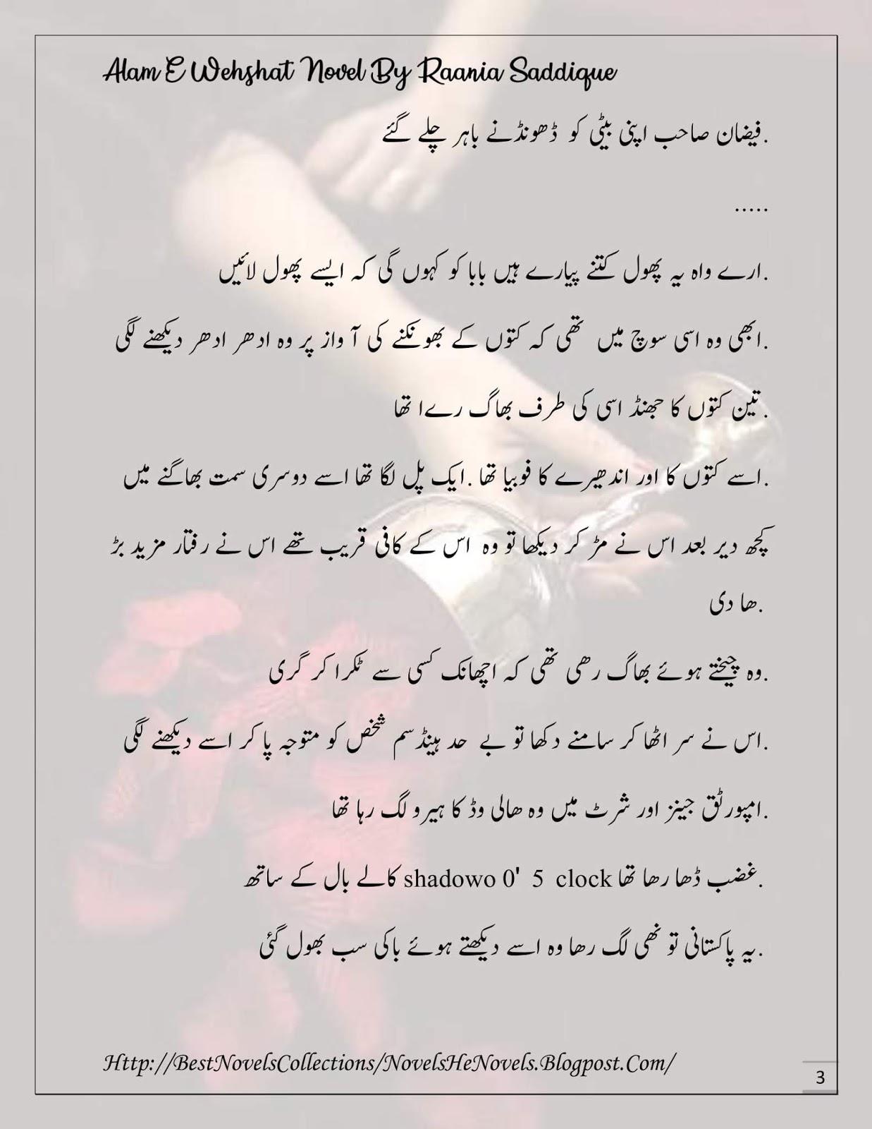 🎉 Urdu romantic novel in which hero kidnaps the heroine for