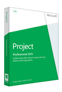 Buy Microsoft Visio Professional 2013 Cheap