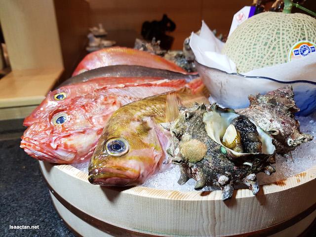 Refreshed Menu @ KIMI-Ya Japanese Restaurant, Avantas Residence