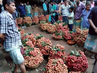 Lychee market in Bangladesh
