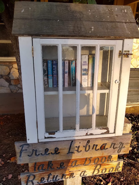 Local Little Free Library