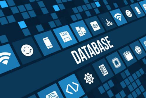 6 Komponen Database Beserta Fungsinya