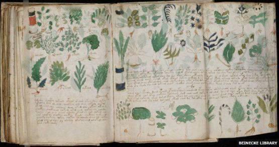 Isi Naskah Kuno Voynich Berhasil Dipecahkan