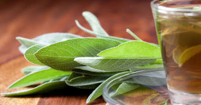 Sage has the ability to tightens, like others astringents. Thanks to its power to tighten liquid content, sage is used for diarrhea, pains and cramps in the stomach and intestines.