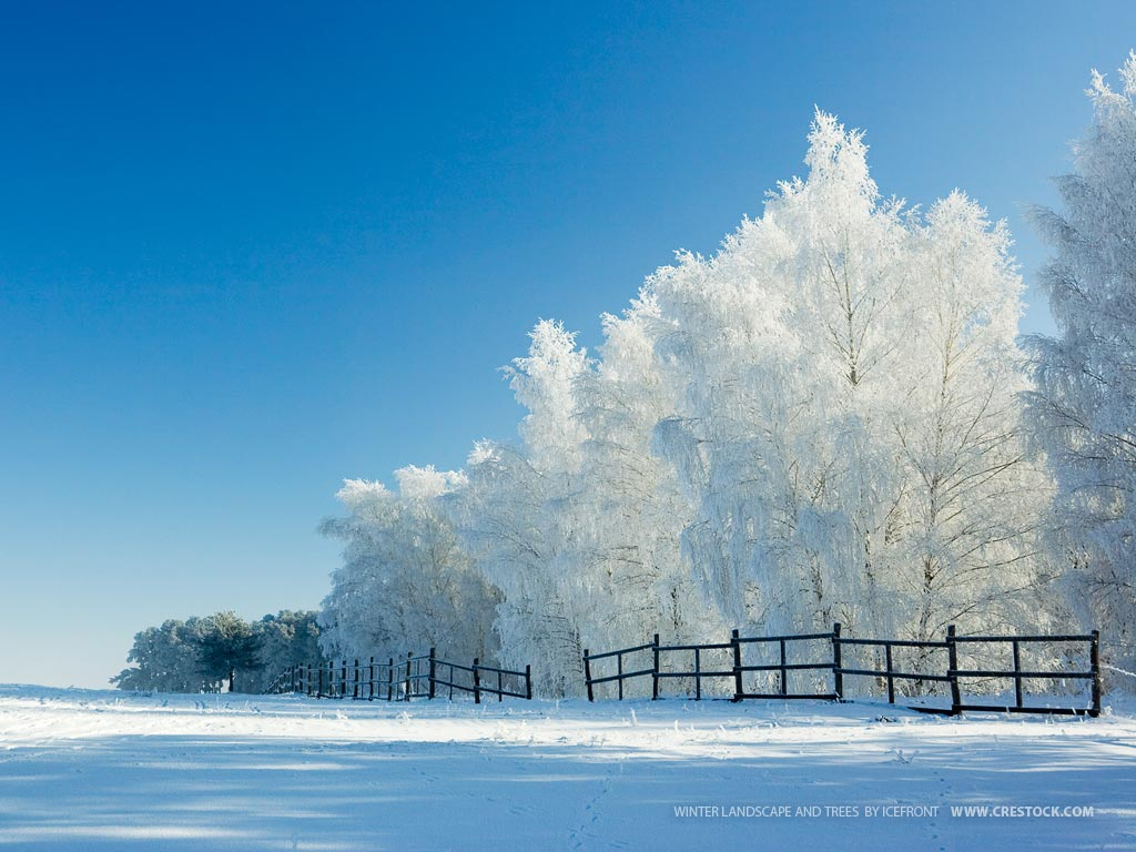Fondo Escritorio Paisaje Nevada En Cumbre: Paisajes Nevados Para Fondo De Pantalla