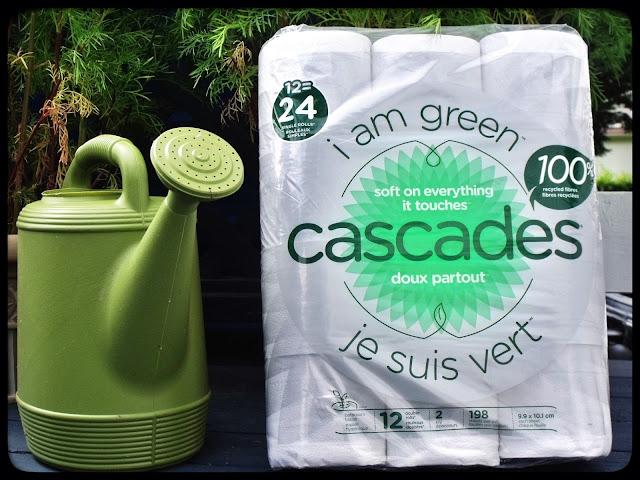 cascade papier recyclé toilette hygiénique marguerite verte blog