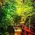 Chinese Garden House Escape