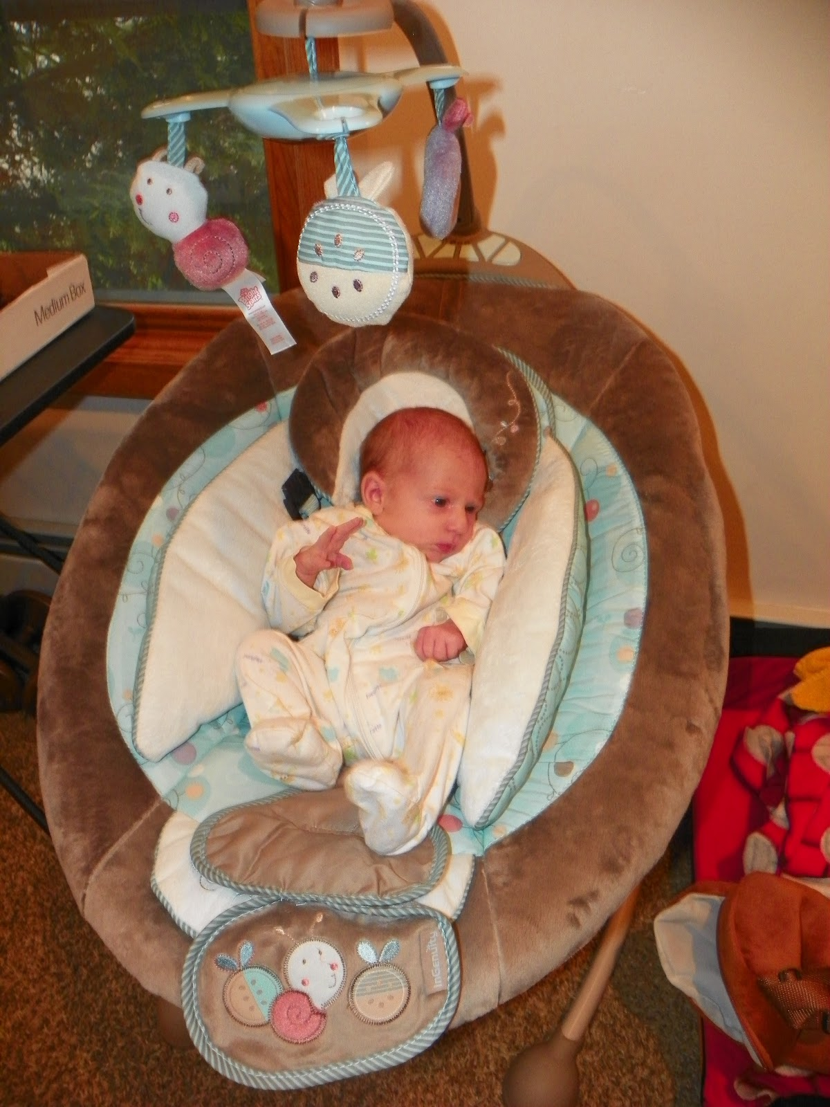Ingenuity Cozy Coo Sway Seat Review And Giveaway The
