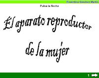 https://cplosangeles.educarex.es/web/edilim/tercer_ciclo/cmedio/las_funciones_vitales/la_funcion_de_reproduccion/el_aparato_reproductor_de_la_mujer/el_aparato_reproductor_de_la_mujer.html
