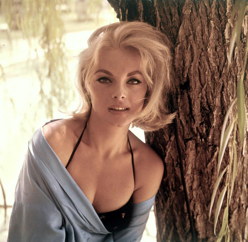 The Perfect Italian Beauty 56 Georgous Photos Of Young Virna Lisi From The 1950s And 1960s