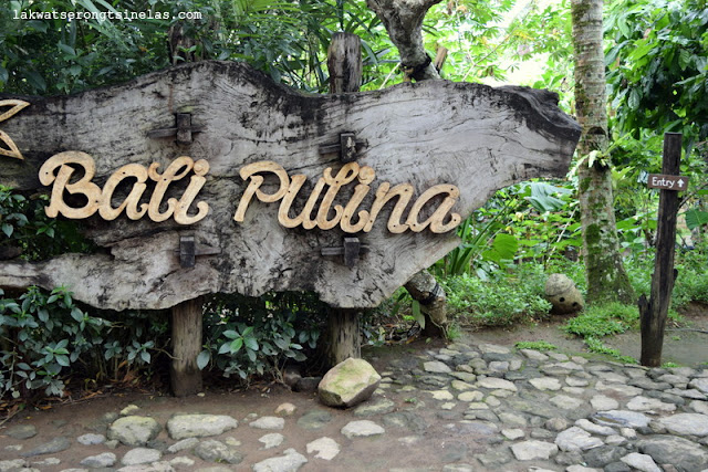 BALI PULINA: A MORNING OF LUWAK COFFEE