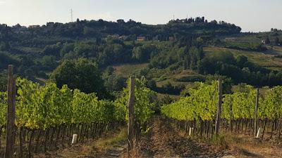 Torricciola Fattoria Fibbiano winery Tuscany