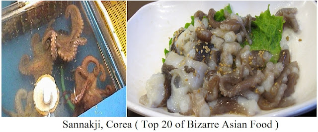 Sannakji, Corea- top 20 of bizarre asian food