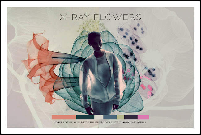 DESIGN COMPETITION // FRONT ROW SOCIETY . X-RAY FLOWERS