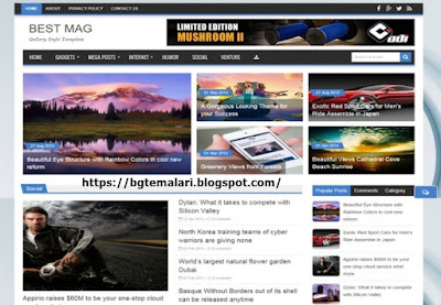 Best Mag Blogger
