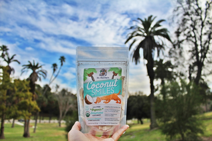 Organic Coconut Treats for Dogs - Dr. Harvey's Coconut Smiles
