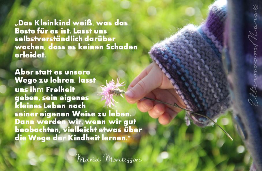 montessori sprüche Am Besten Maria Montessori Zitate &TY28 | Startupjobsfa montessori sprüche