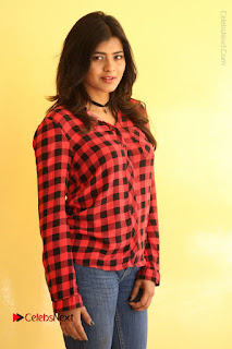 Actress Hebah Patel Stills in Blue Denim Jeans at Nanna Nenu Naa Boyfriends Movie Success Meet  0086.JPG