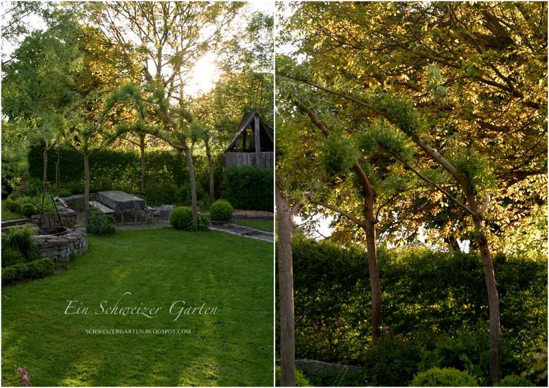 Alles Im Grünen Bereich Ein Schweizer Garten Bloglovin