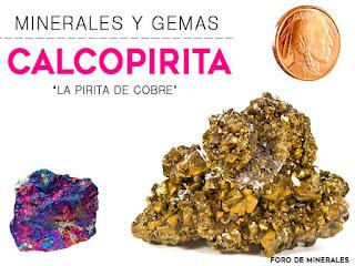 Minerales y Gemas : Calcopirita el oro de los tontos - foro de minerales