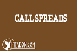 Call Spreads
