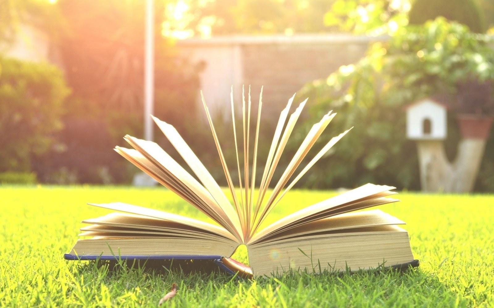 16 Contoh Kalimat Majemuk Bertingkat Materi Belajar