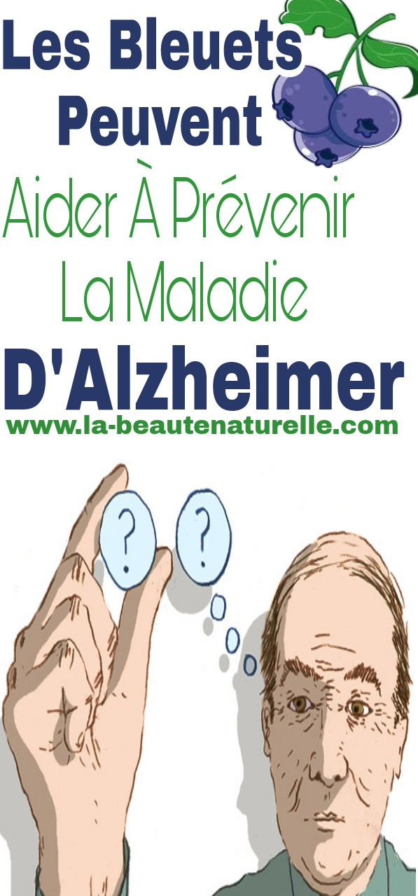 Les bleuets peuvent aider à prévenir la maladie d'Alzheimer