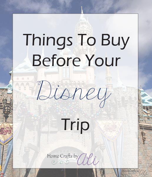 items to buy before heading to Disneyland or Disney World