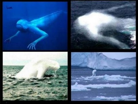 Antarctic Ice Giants Seen Migrating Amid Polar Ice Melting