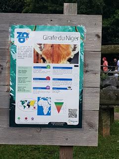 panneau-de-presentation-girafe-du-niger-zoo-de-maubeuge