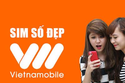 Cơ hội sở hữu nhiều sim số đẹp vietnamobile tại simsodep.com.vn