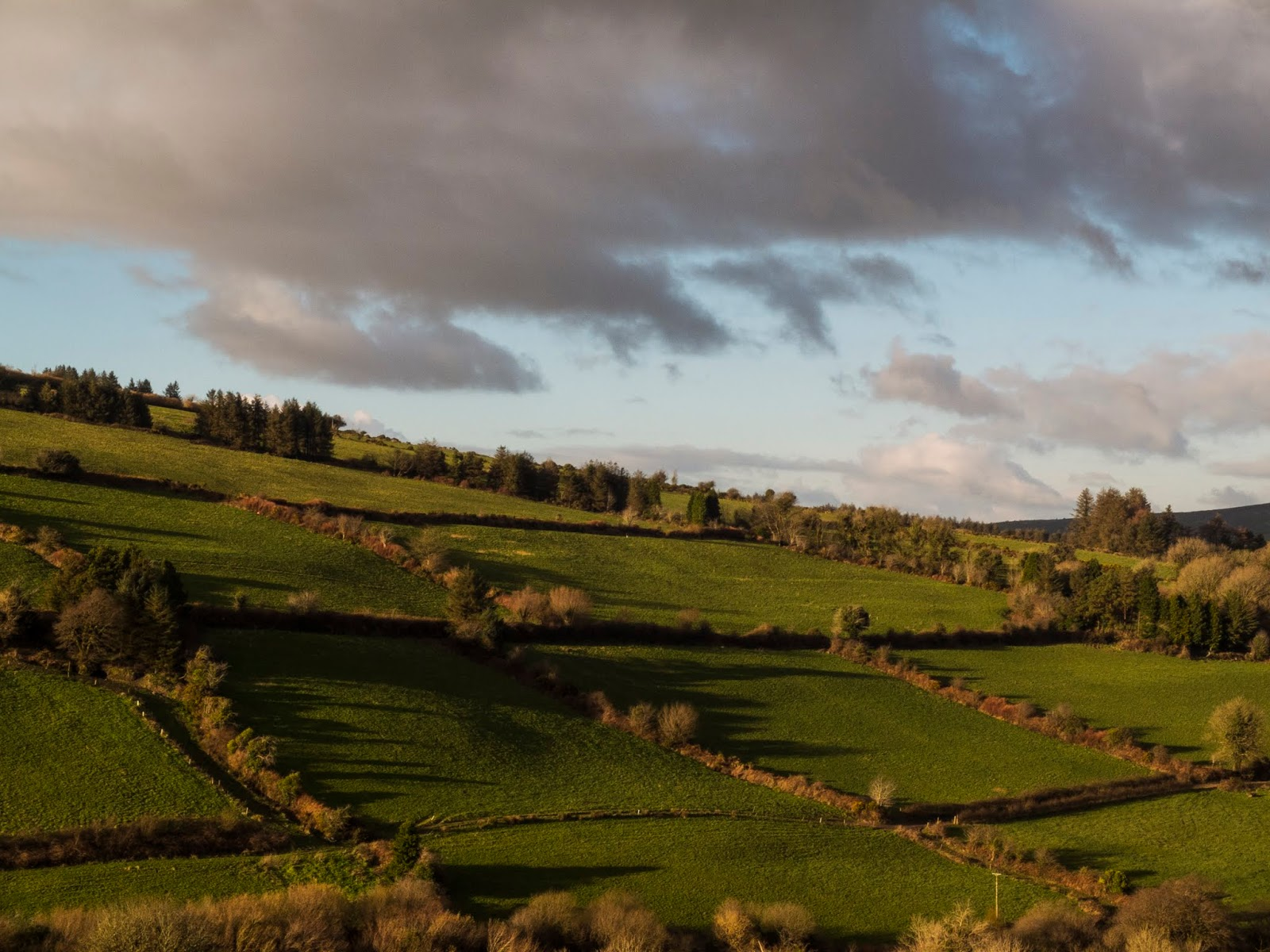 Landscape of a mountainside in North County Cork.