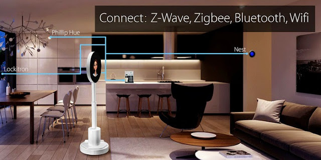 Smart Telepresence Robots for You (8) 8