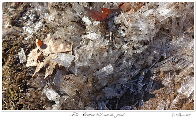 Fells: Crystals hold onto the ground