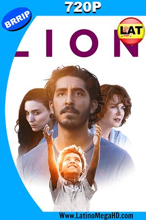 Lion (2016) Latino HD 720p ()