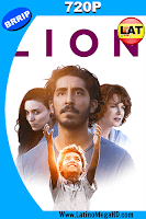 Lion (2016) Latino HD 720p - 2016