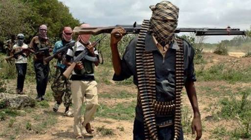 Three people were killed by Boko Haram insurgents in a raid