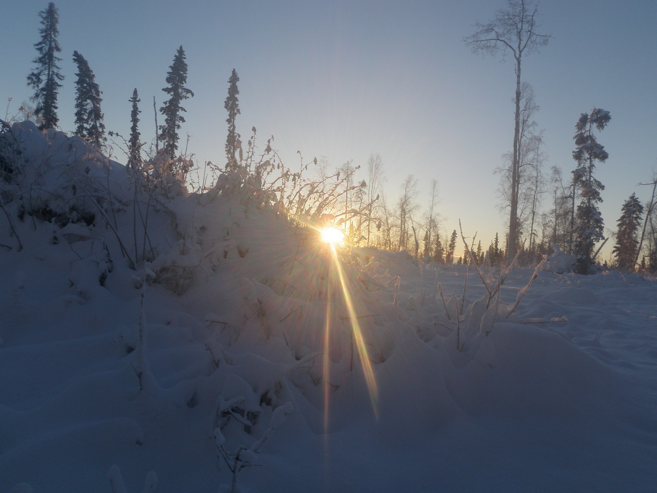 tanana single women Bios nations jordan joey zuray explains the key factors to surviving winter in tanana i agree to receive information from discovery communications in.