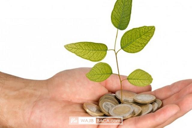 Tanam Pohon Rezekimu Sendiri Dengan Melakukan 4 Kunci Muda Memperlancar Aliran Rezeki, Mau Tahu?