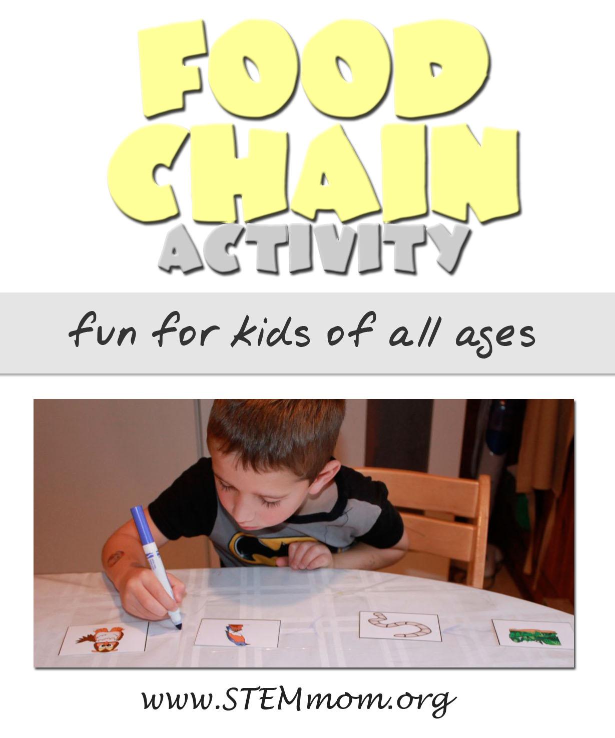 Dr Stem Mom Food Chain Activity