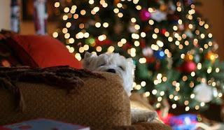 планируем новый год, к новому году все готово, как подготовиться к новому году, план подготовки к новому году