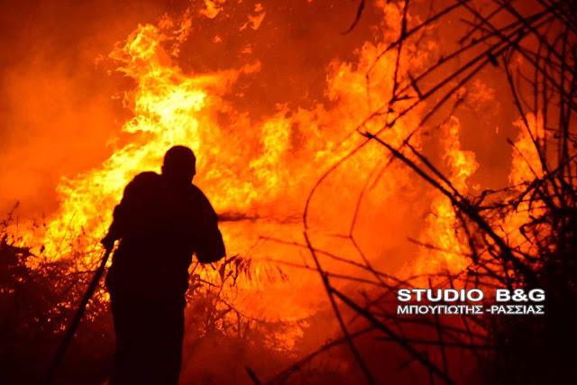 Αργολίδα: Πυρκαγιά στην εθνική Ναυπλίου - Μυκηνών