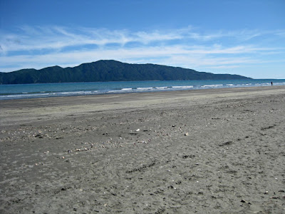 Beach and Kapiti Island