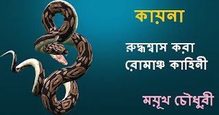 Mayukh Chowdhury Bangla Boi PDF E-books