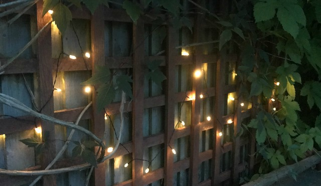 heart fairy lights from Homebase