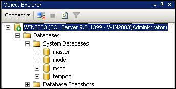 Oracle Database, SQL Server, MS SQL, Oracle Database Applications