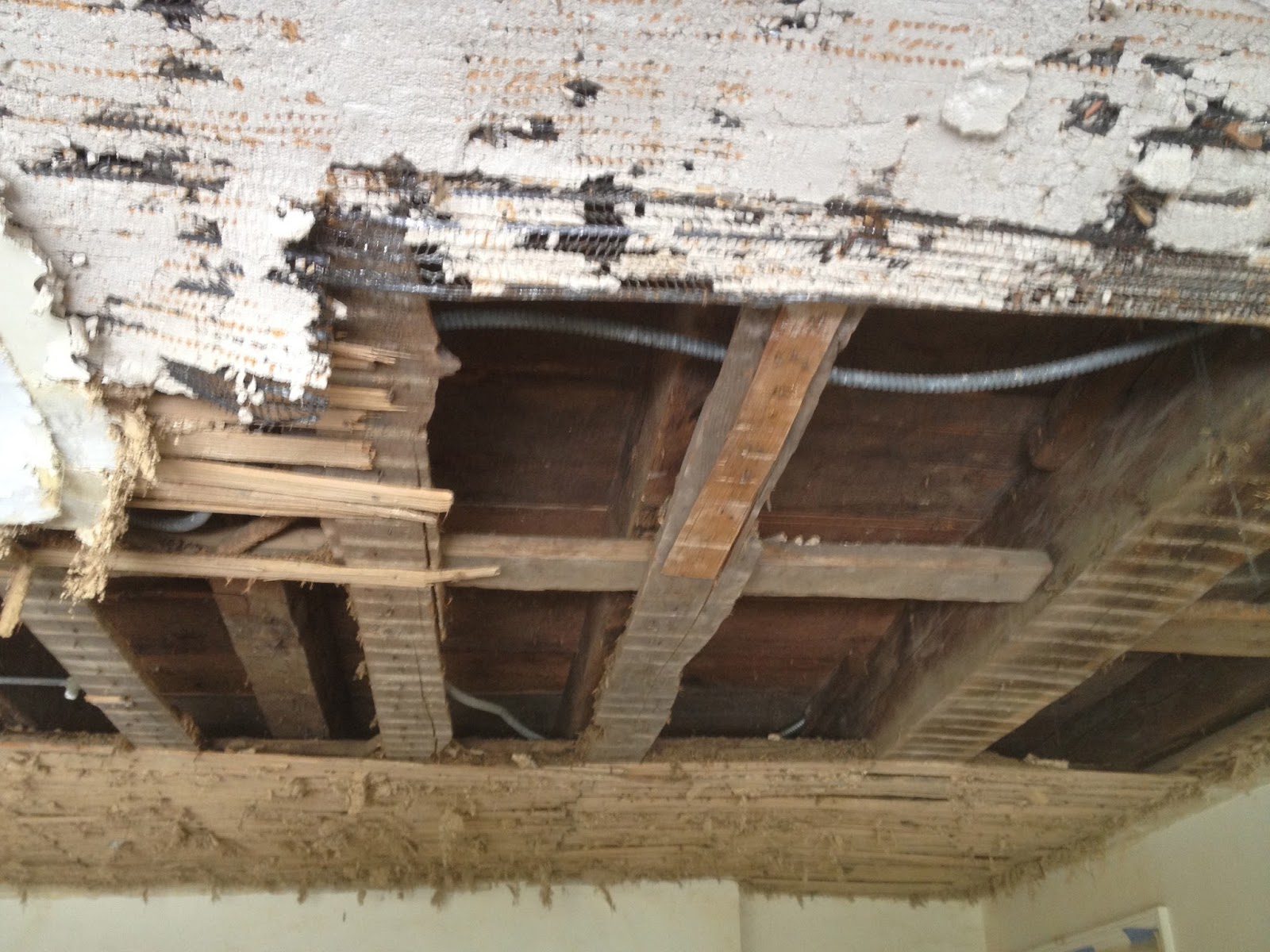 lath support beams on ceiling